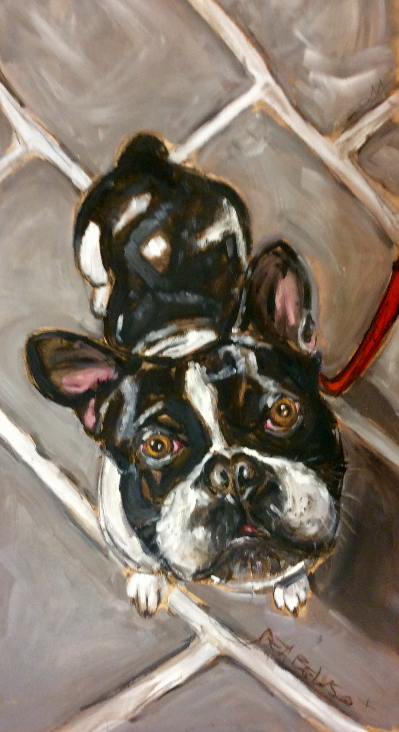 Bulldog - oil on canvas - Contact for price